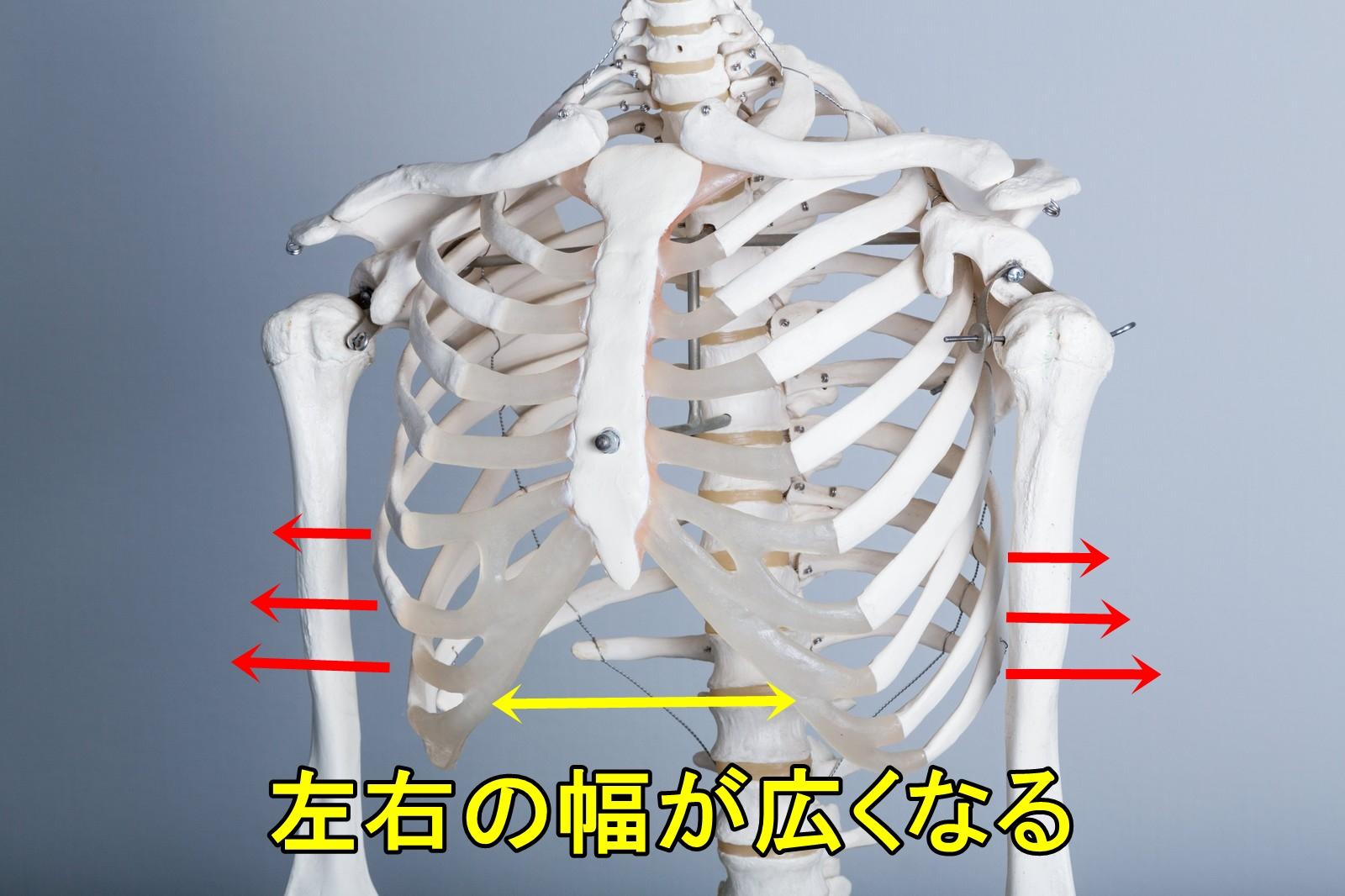 肋骨が開く